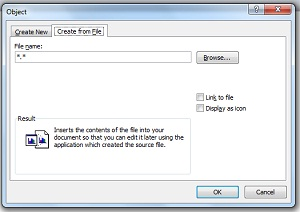 Insert Excel File